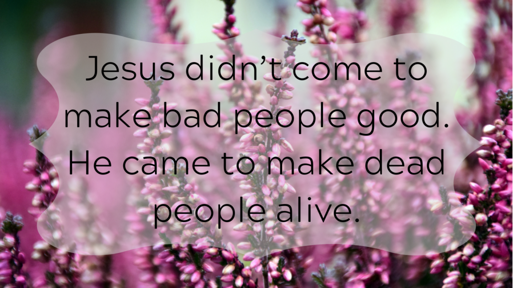 """f984883785f8e8 ... who we're better than. Boom. You're bad. I'm good. But as someone  recently said, """"Jesus didn't come to make bad people good. He came to make  dead people ..."""